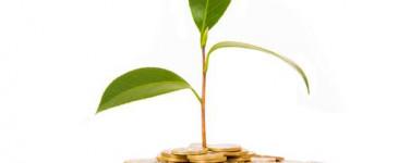 TeachMeCash: обзор перспективного инвестиционного проекта