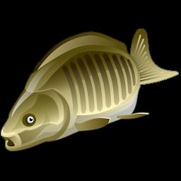 Зимняя рыбалка: снасти и снаряжения