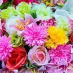 Оптовые закупки цветов: основные тонкости выбора надежного поставщика