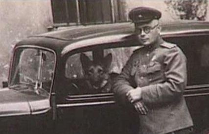 Зачем дезертир Николай Павленко во время войны создал фиктивную воинскую часть