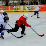 Хорошая школа хоккея в Москве