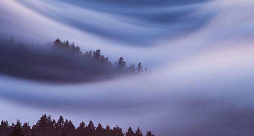 Фото дня: туман